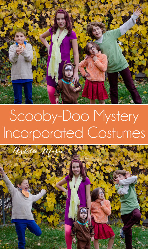 scooby doo and mystery incorporated family halloween costumes