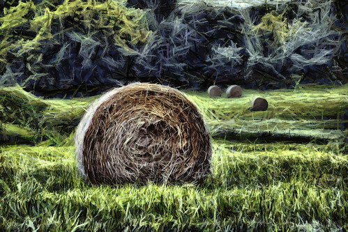 rural landscape farm digitalart maryland digitalpainting hay haybales strawbales baltimorecounty dynamicautopainter zunikoff