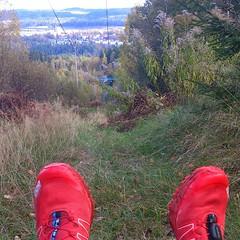Härligt backpass på Rya Åsar i Borås. Häng med och spring här med #teamnordictrail Mer på http://www.teamnordictrail.se #älskastig #salomonsense #trail