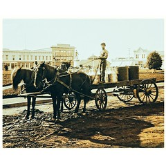 amish(0.0), pack animal(0.0), horse and buggy(0.0), carriage(0.0), vehicle(1.0), coachman(1.0), horse harness(1.0), cart(1.0),