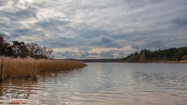 Frensham Little Pond Wide View...{Explored}...