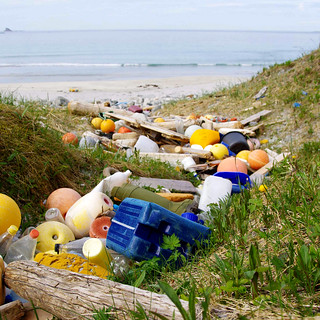 Marine litter. Like a river out to sea. Loads of plastic
