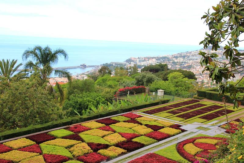 Madeira, Funchal 2014 + ostokset 1073