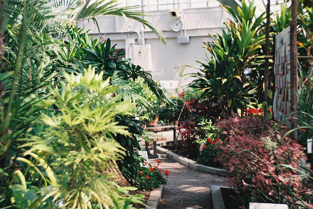函館熱帯植物園