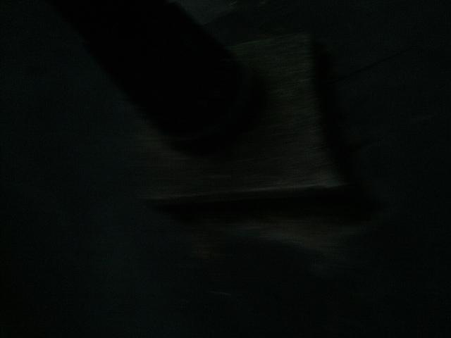 PIC_1311