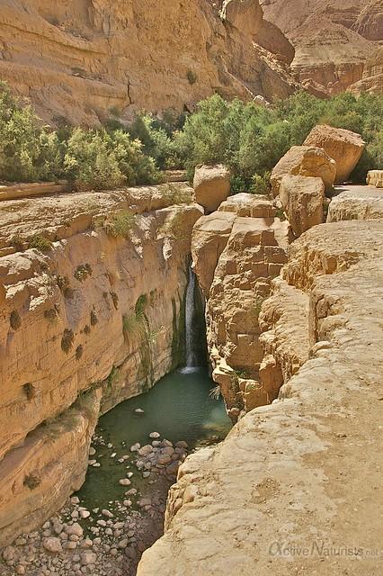 view waterfall 0006 Nahal Arugot, Dead Sea, Israel