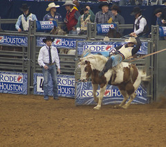 Houston Rodeo 2014-42