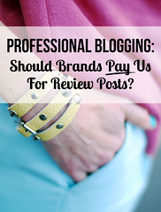 Professional Blogging: Should Brands Pay Us For Review Posts?