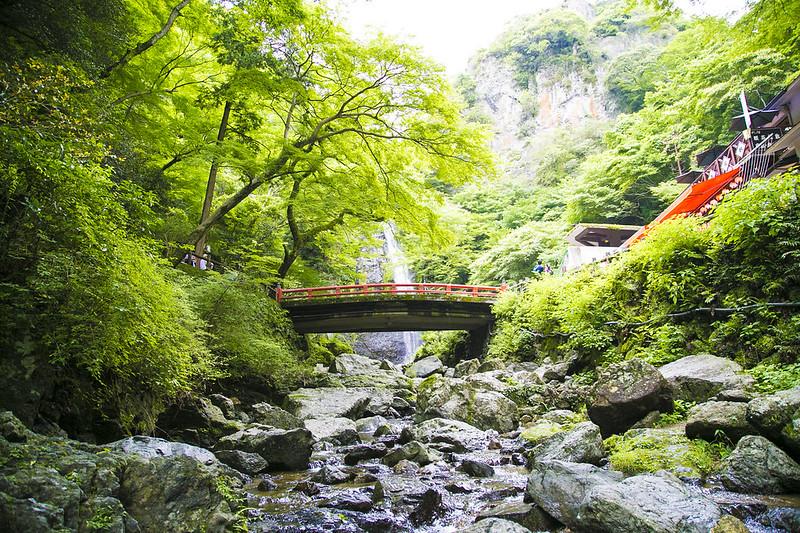 箕面_大滝_ハイキング438