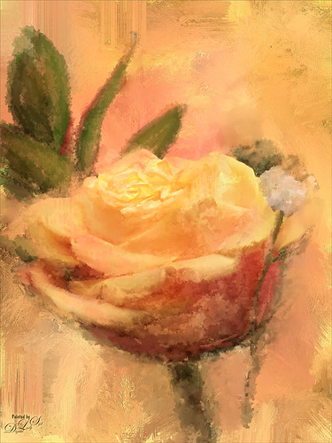 Image of a beautiful painted yellow rose