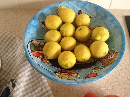 09.Aug.14 12 lemons