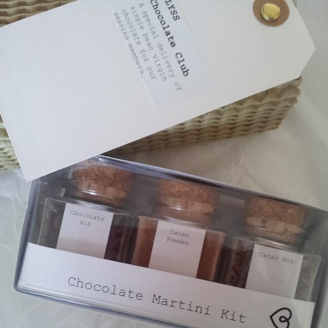 Chocolate martini making kit (by Blyss Chocolate)
