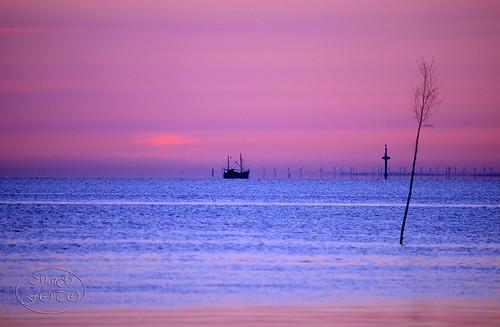 seascape sunrise landscape nikon northsea nordsee sonnenaufgang d800 beforesunrise morningmood nordseeküste butjadingen fedderwardersiel nikond800