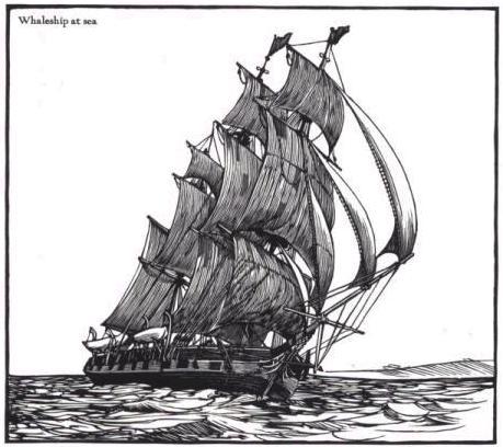 《白鲸》中的捕鲸船
