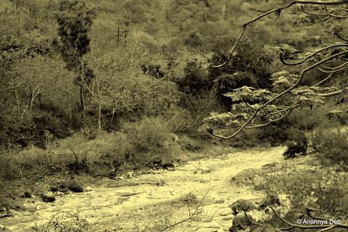 Waghora River, Ajanta, July 2014