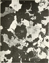 "Image from page 64 of ""A microscopic study of the silver ores and their associated minerals .."" (1917)"
