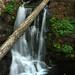 Knopki falls