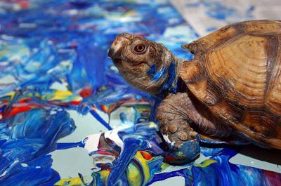 koopa painting turtle