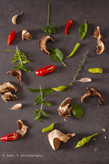 Red and green chilly pepper,herbs and spices on a…