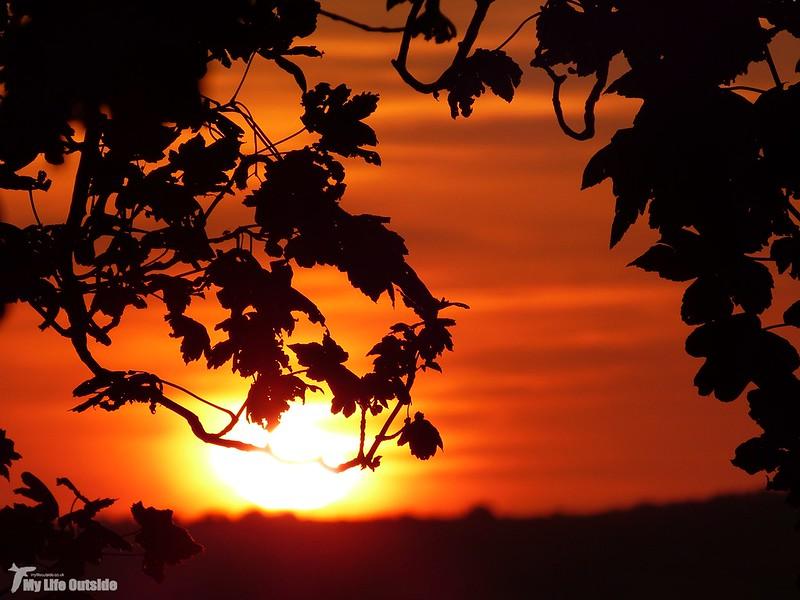 P1080878 - Sunset