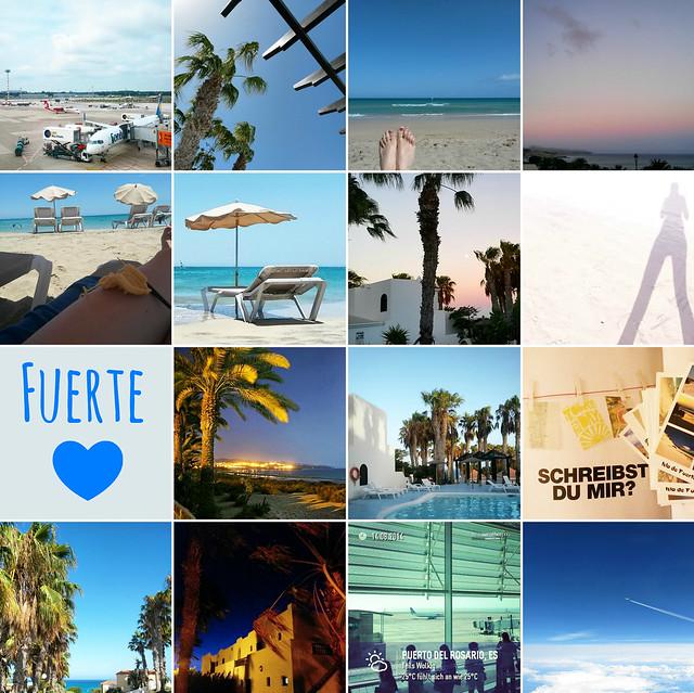 Goldengelchen Monatsrückblick August 2014 Fuerteventura