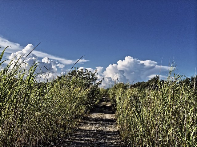 Levee trail to south 20140903