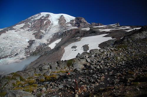 Pebble Creek Mount Rainier