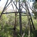 Small photo of Mountain Hero trail - old mining aerial tramway