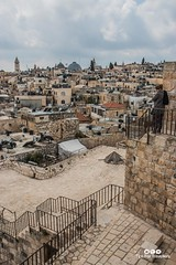 Old City across to Christian Quarter from Ramparts Jerusalem Israel-2