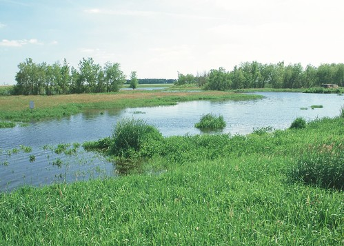 Wetland sites like this one provide  outdoor recreation opportunities including bird watching and hunting. NRCS photo.