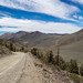 White Mountain Road by cdx_cdx
