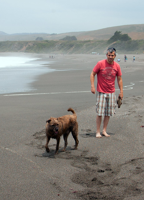 Sonoma County Dog Friendly Camping