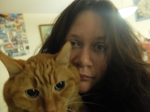 the lion cat & me