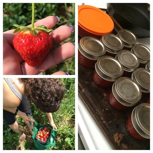 Iron Craft: Strawberry Jam
