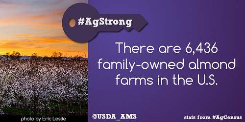 6,436 family-owned almond farms in the US