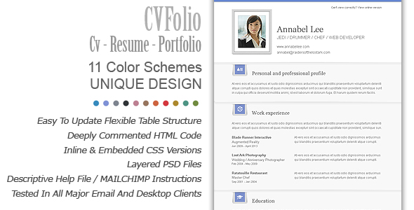 professional-resume-format_professional-resume-template