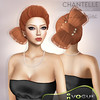 NEW - Hairstyle - CHANTELLE