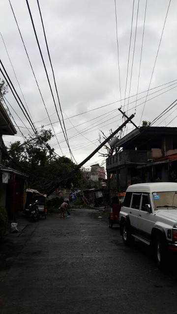 Typhoon Rammasun Damage