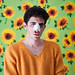 Sunflowers by damontosa
