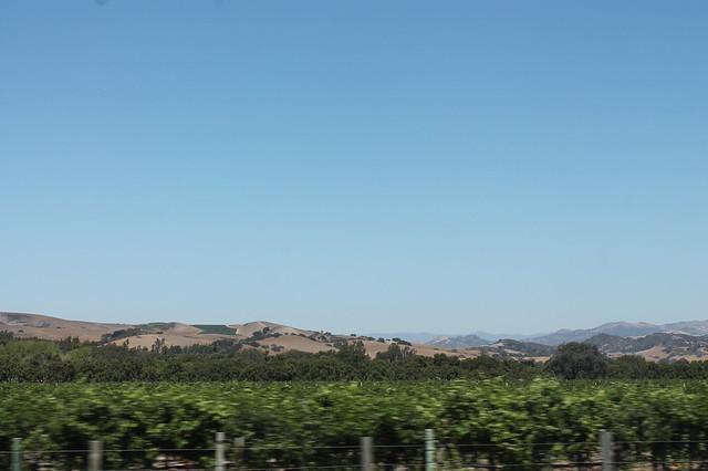green things in california