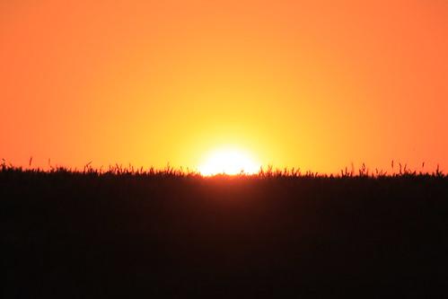 More sunset beauty.