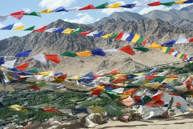 Lehchen Palkhal and Namgyal Tsemo. Leh, Ladakh, 05 Aug 2014. 040