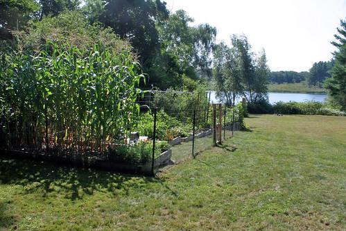 garden_9425