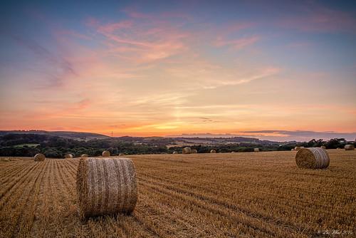 sunset sky field clouds nikon isleofwight 24mm hay bales goldenhour countyside cokin d610 samyang 14g