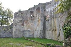 Ferrette.Les ruines du château de Ferrette.4