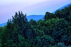 Landscape adjacent to Rainbow Hill