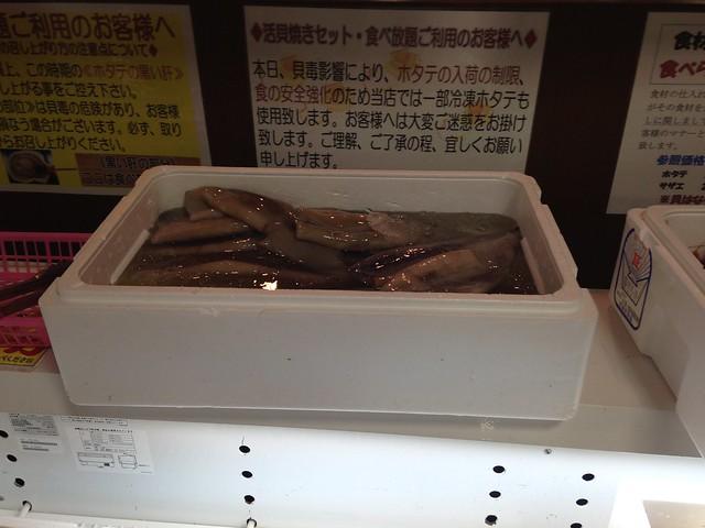 漁師料理たてやま_013