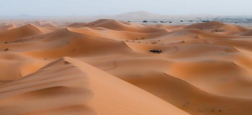africa sunset sahara sand desert dunes explore camel maroc western caravan northern mighty personalfavorites