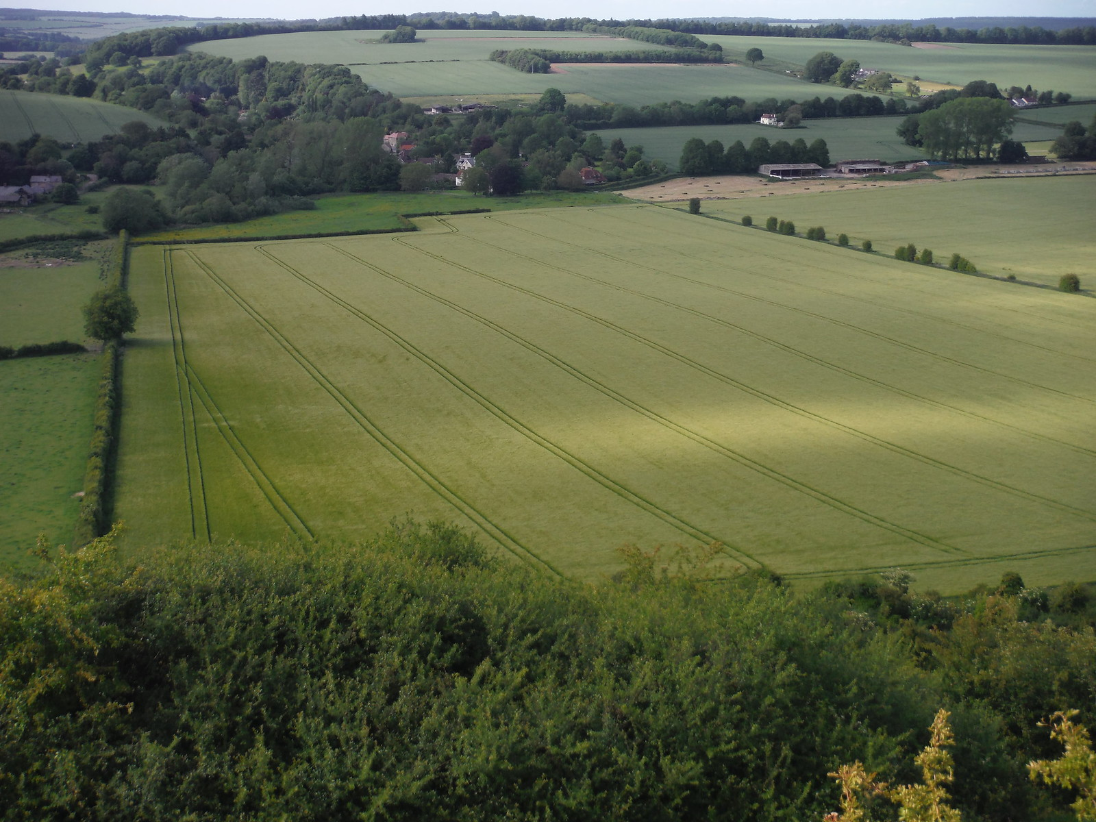 Field Patterns SWC Walk 249 Tisbury Circular via Dinton and Fovant