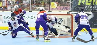 Roller Inline Hockey